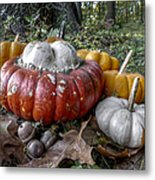 To Swell The Gourd Metal Print