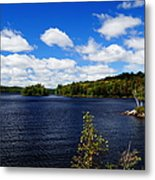 To The Island And Back Metal Print
