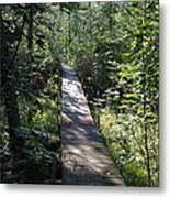 To The Trout Stream Metal Print