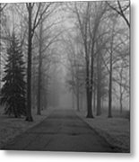 To Where It Leads  Bw Metal Print