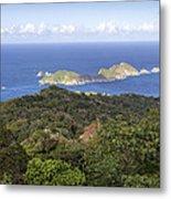 Tobago Rainforest Metal Print
