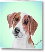 Toffee - A Former Shelter Sweetie Metal Print