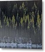 Toiga Lake Metal Print