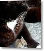 Tom And Jerry Metal Print