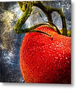 Tomato On A Vine Metal Print