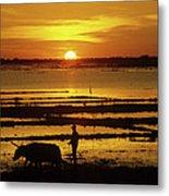Tonle Sap Sunrise 01 Metal Print