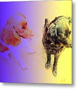 To See It All On Top Of The Dogs Metal Print