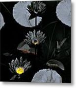 Torchlight Water Flowers Metal Print