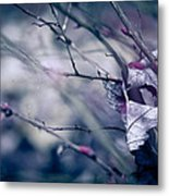 Torn And Tattered Metal Print by Shane Holsclaw