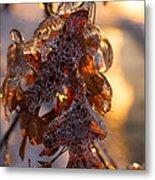 Toronto Ice Storm 2013 - Oak Leaves Jewelry Metal Print