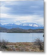 Torres Del Paine National Park Metal Print