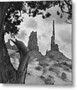 Totem Pole - Arizona Metal Print
