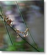 Touch Of Class Metal Print