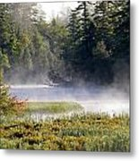 Touch Of Fall Metal Print