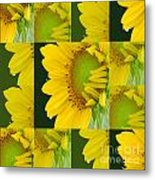 Touch Of Yellow  Metal Print