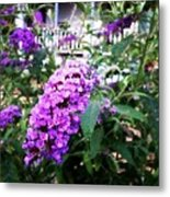 Touched By Unnoticed Beauty Metal Print