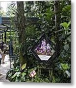 Tourist Doing Photography And Viewing Plants In A Garden Metal Print
