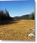 Towards Hand Lake And Mt Jefferson Metal Print