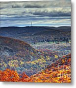 Tower In The Distance Metal Print
