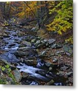 Tracking Color - Big Hunting Creek Catoctin Mountain Park Maryland Autumn Afternoon Metal Print