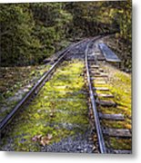 Tracks Along The River Metal Print