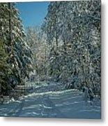Tracks In The Snow Metal Print