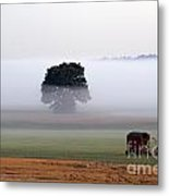 Tractor In Field Low Fog With Tree And Harvester Metal Print