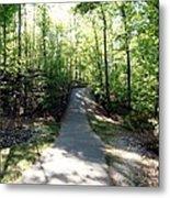 Trail Around Lake Johnson Metal Print