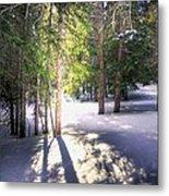 Trail To Bear Lake 4490 Metal Print
