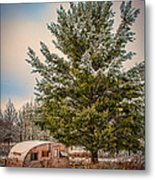 Trailer Trash Metal Print