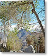 Trailhead Area In Andreas Canyon In Indian Canyons-ca Metal Print
