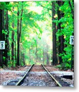 Train Tracks In Forest Metal Print