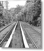 Train Tracks Running Through The Forest Metal Print
