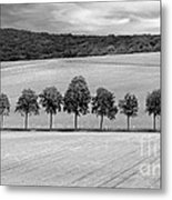 Train With A View Bw Metal Print