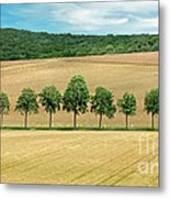 Train With A View Metal Print
