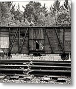 Trains Metal Print by David Fox Photographer