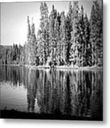Tranquil Reflection In B And W Metal Print