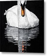 Tranquil Reflection Metal Print