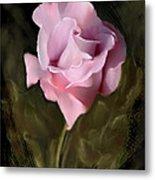 Tranquil Rose Metal Print