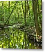 Tranquility In The Forest Metal Print by Adam Jewell