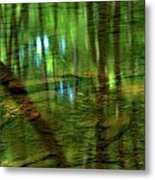 Translucent Forest Reflections Metal Print