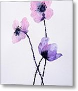 Translucent Poppies Metal Print