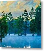 Trap Pond 3 Metal Print