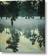 Trap Pond 5 Metal Print