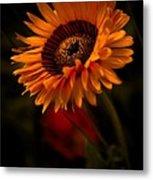 Treasure Flower Metal Print