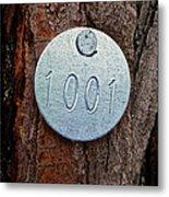Tree 1001 Metal Print
