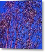 Tree Abstract Purple Blue  Metal Print