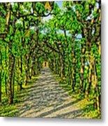Tree Alley In Castle Park Metal Print