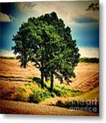 Tree Alone Metal Print