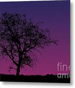 Tree And Coyote Metal Print